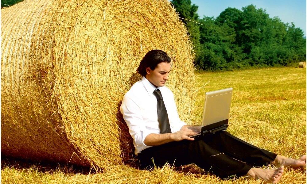 Дополнительный заработок сельского хозяйства