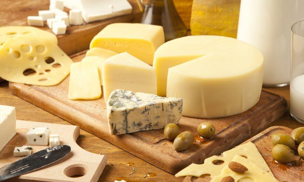 Открытие бизнеса по сыроварению
